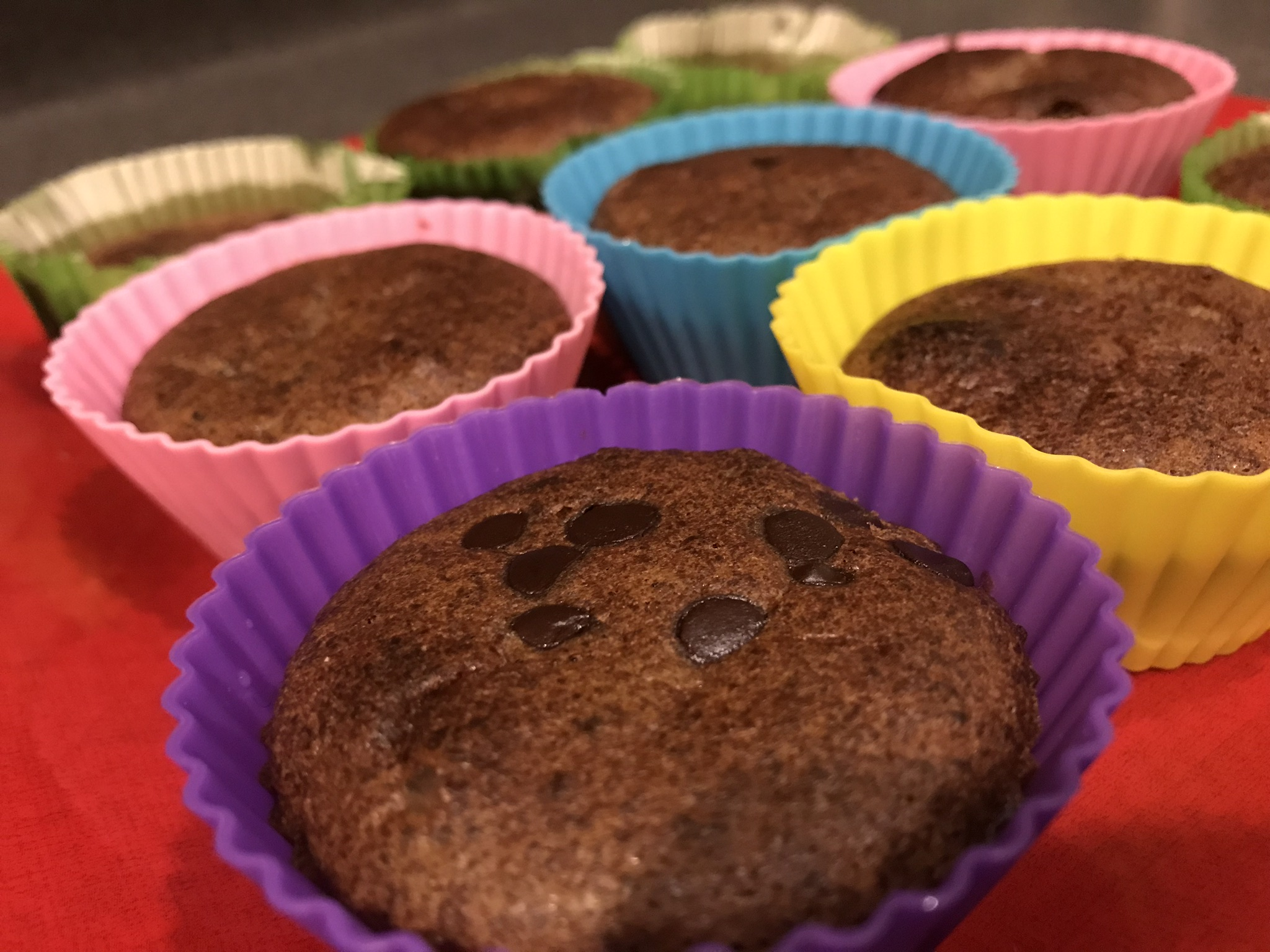 Low Carb Chocolate Chip Chocolate Muffins